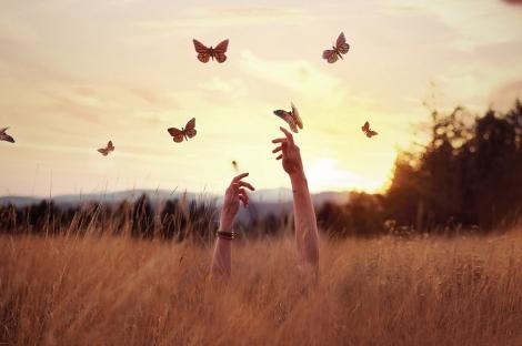 mani-e-farfalle